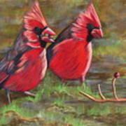 Cardinal Two Art Print