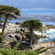 Carmel Seaside With Cypresses Art Print