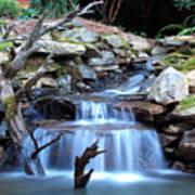 Carolina Mountain Stream Art Print