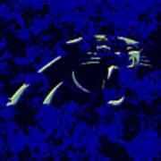 Carolina Panthers 1c Art Print