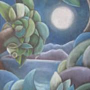 Carribean Night Art Print