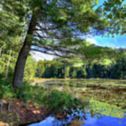 Cary Lake In August Art Print