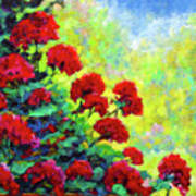 Cascade Of Geraniums Art Print
