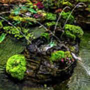Cascades Fountains Art Print