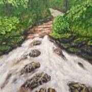 Cascading Stream Art Print