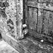 Casco Viejo Door Mono Art Print