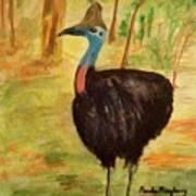 Cassowary Bird Art Print