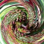 Caster Bean Abstract Art Print