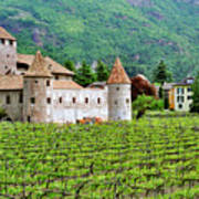 Castle And Vineyard In Italy Art Print