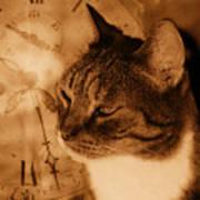 Cat And Clock Art Print