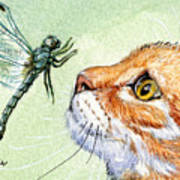 Cat And Dragonfly  Art Print