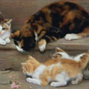 Cat And Kittens Chasing A Mouse   Print by Rosa Jameson