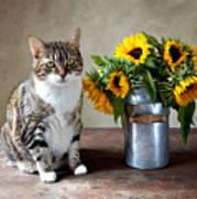 Cat and Sunflowers Art Print