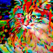 Cat By Fauvism Art Print