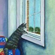 Cat By The Window Art Print