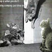 Cat Dropping In Art Print