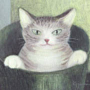Cat In A Bucket Art Print