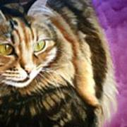 Cat In Purple Background Art Print