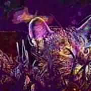 Cat Kitten Mieze Tiger Cat  Art Print