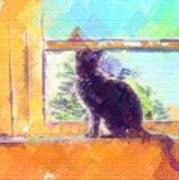 Cat Looking Out The Window Art Print