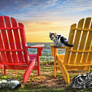 Cat Nap At The Beach Art Print by Debra and Dave Vanderlaan