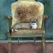 Cat On A Chair Art Print