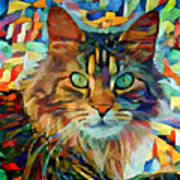 Cat On Colors Art Print
