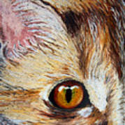 Cat Visions Art Print by Lorraine Foster