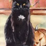 Cat With The Pumpkin Art Print