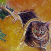 Cat With Watering Can Art Print