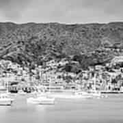 Catalina Island Avalon Bay Black And White Panorama Photo Art Print