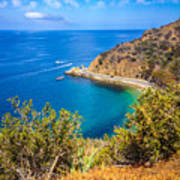 Catalina Island Lover's Cove Picture Art Print