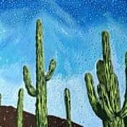 Catalina State Park Art Print