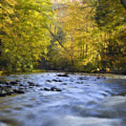 Cataloochee Valley River Art Print