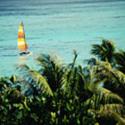 Catamaran On Tumon Bay Art Print