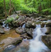 Catawba Stream In Pisgah National Forest Art Print