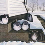 Cats - Jake's Mousers Art Print