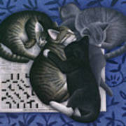Cats And Crossword  Art Print by Carol Wilson