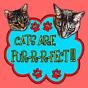 Cats Are Pur-r-r-fect Art Print