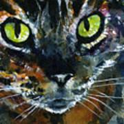 Cats Eyes 16 Art Print