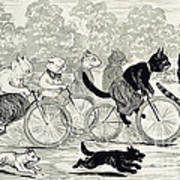 Cats In A Bicycle Race, Hyde Park, 1896 Art Print