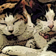 Cats In Bed Print by KR Moehr