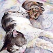 Cats In Watercolor Art Print