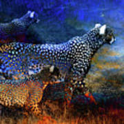 Cats On The Prowl Art Print