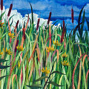 Cattails Art Print by Helen Klebesadel