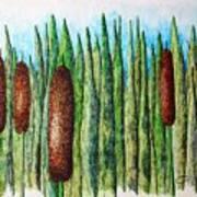 Cattails 1 Art Print