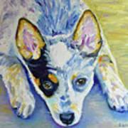 Cattle Dog Puppy Art Print