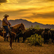 Cattle Drive 41 Art Print