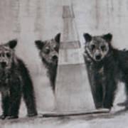 Caution Bears Art Print