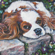 Cavalier King Charles Spaniel In The Pansies  Print by Lee Ann Shepard